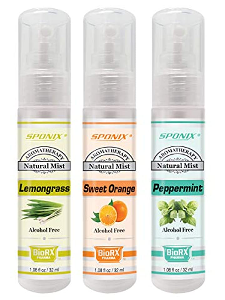 無一文爆風災難トップアロマテラピーミストセット - ベスト3香料入りミスト - レモングラス、ユーカリ、ペパーミント - アルコールフリー1ポンドスポンジ