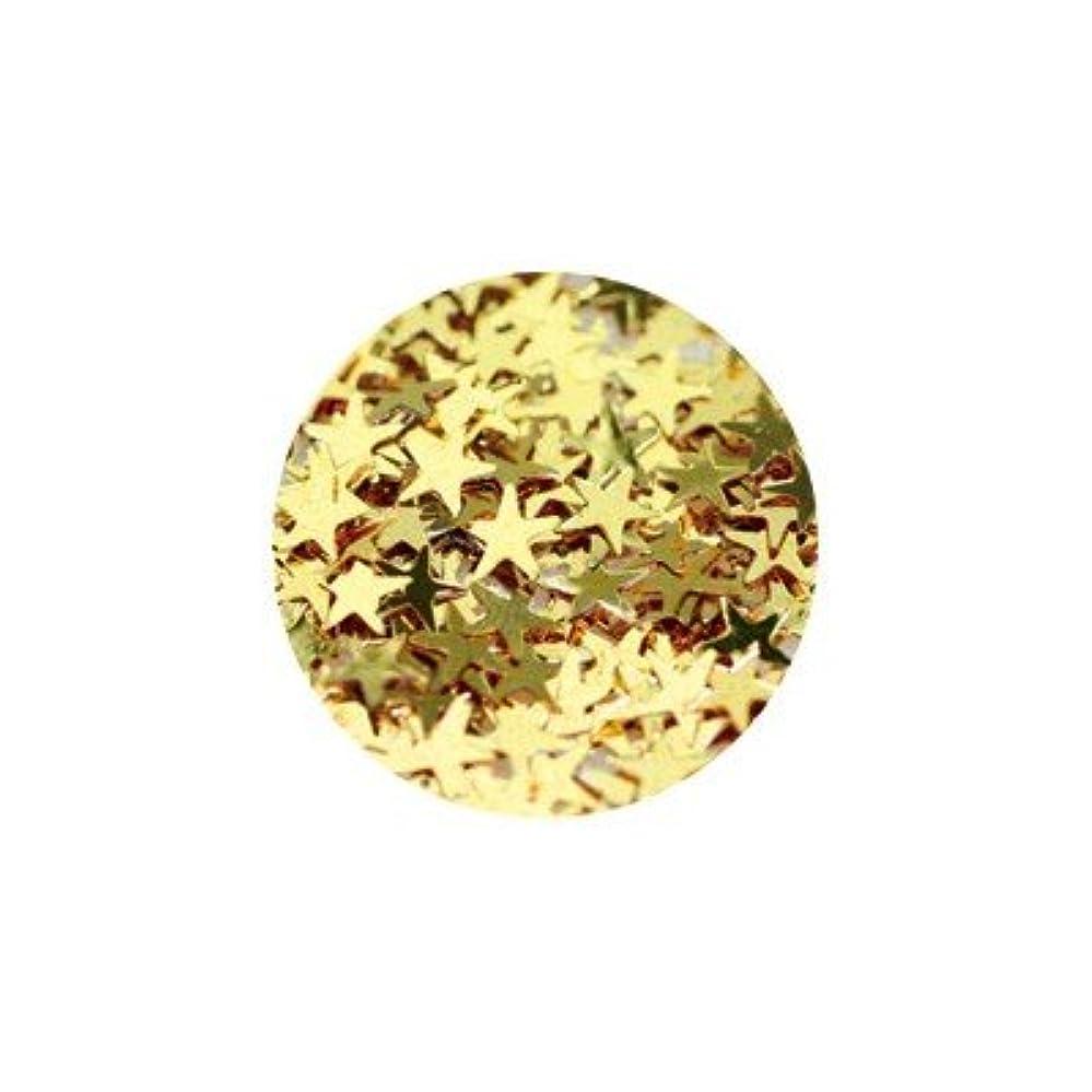 罹患率法律前方へキラキラ ゴールド スター 3mm