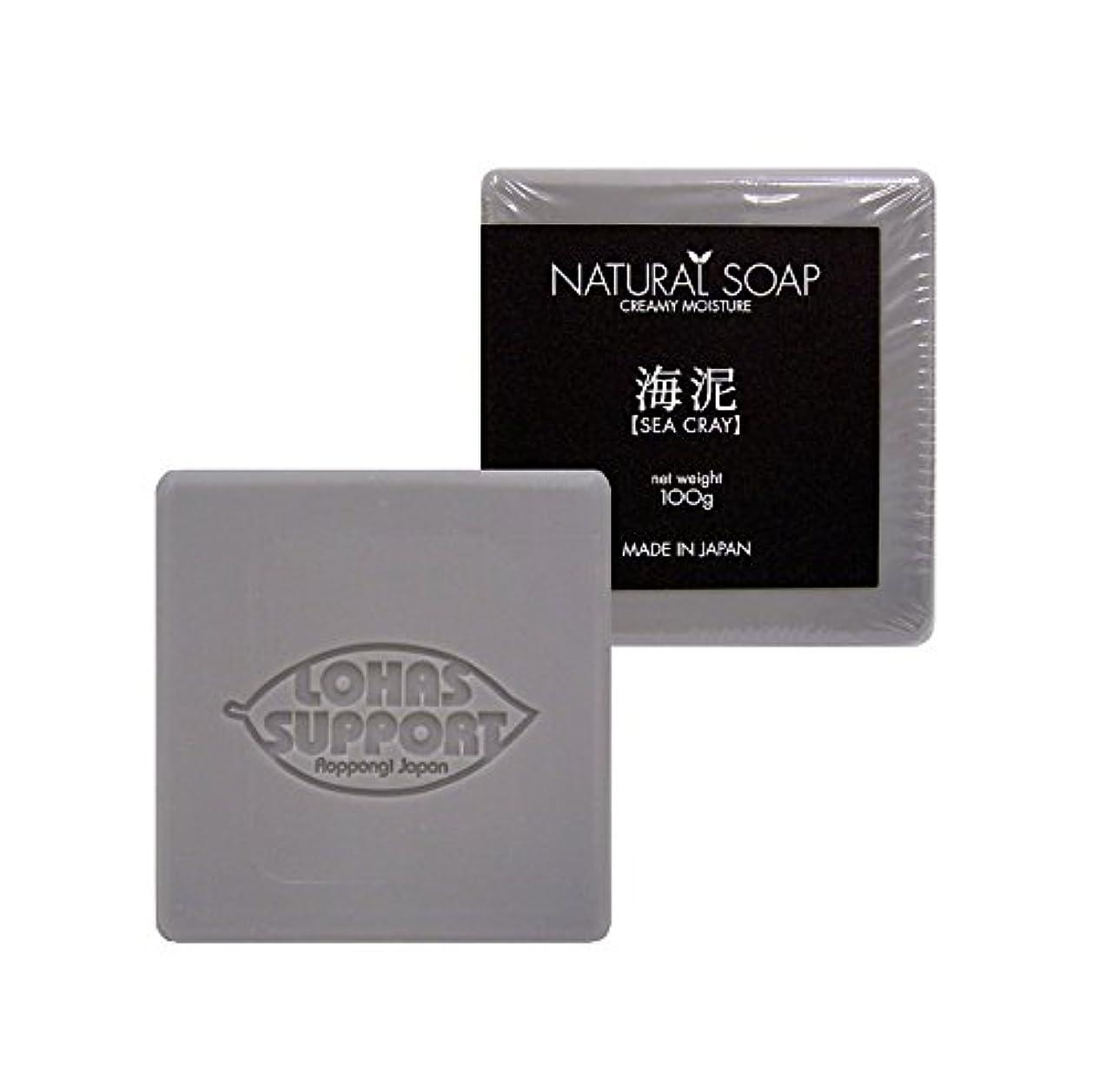 東ティモール慣れるスティックNATURAL SOAP