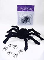 ????? Web Spider + Realistic Spider + 6 Tiny Spider For Halloween Decoration - Super Stretchable.????? [並行輸入品]