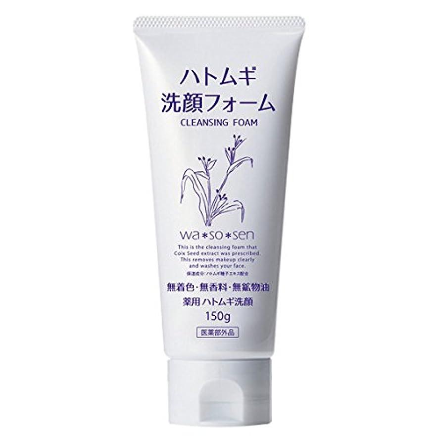 冷ややかな意識的国際薬用ハトムギ洗顔フォーム (150g)