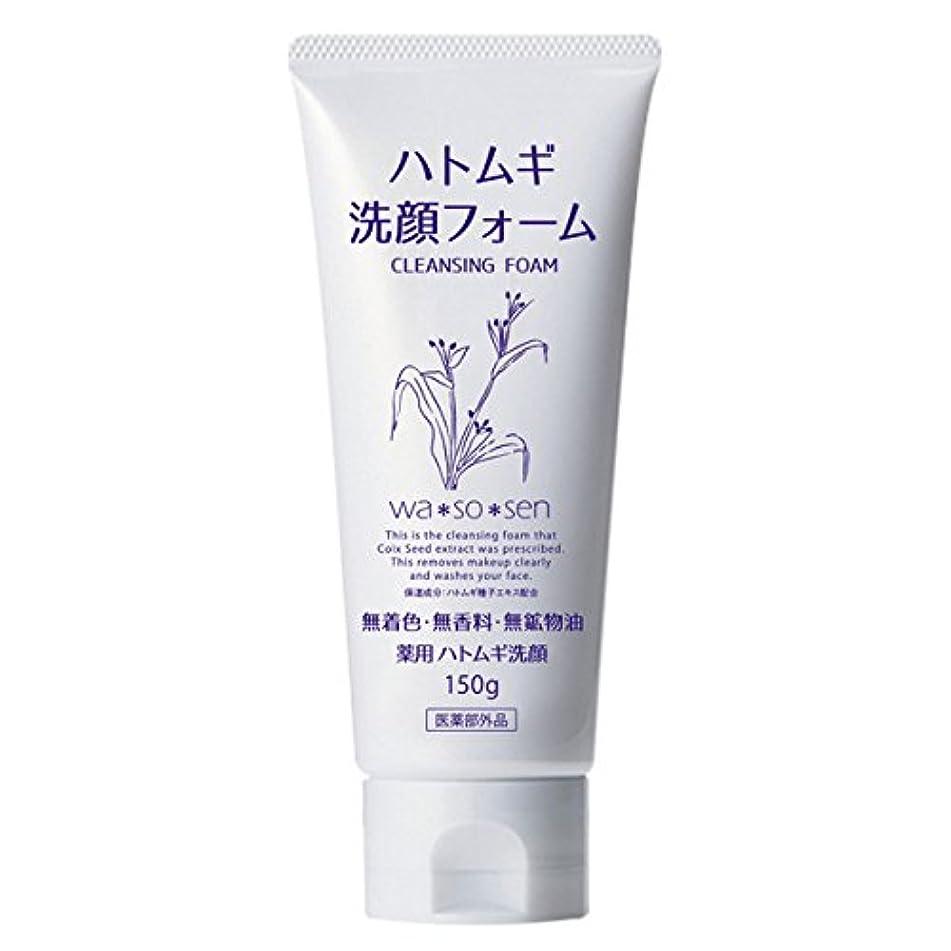 効率全部抱擁薬用ハトムギ洗顔フォーム (150g)