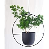 Sinolodo Metal Hanging Planters Boho Plant Hanger for Indoor Wall and Ceiling Hanging planters,Metal Black(Round)