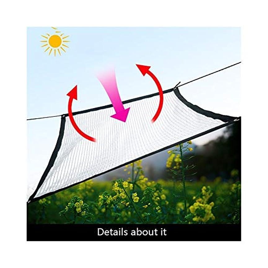 不当試用モニターSHIJINHAO オーニングシェード遮光ネット 庭園 望楼 多肉植物 カバー 太陽を遮る アンチUV 金属穴付き アルミ箔、18サイズ (Color : Silver, Size : 2x4m)