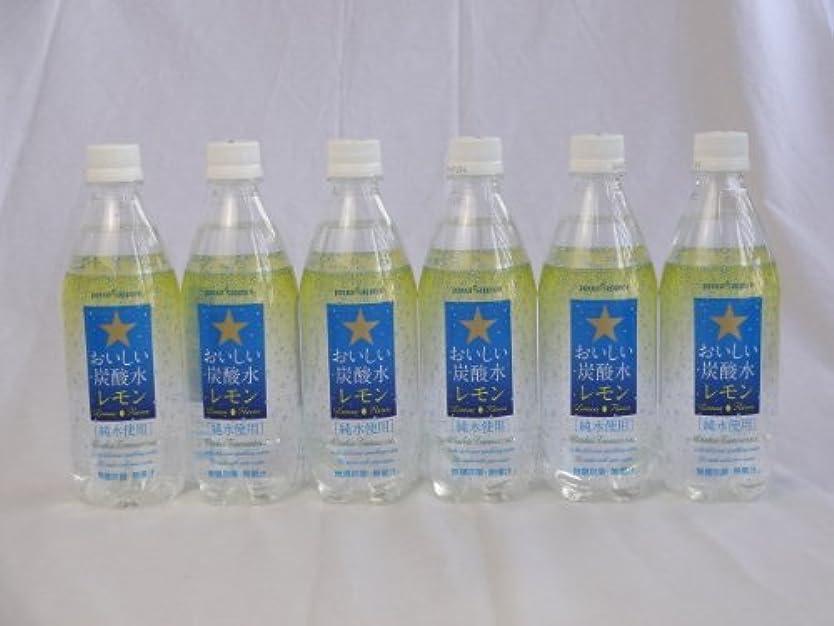 利益ふける標準サッポロおいしい炭酸水レモン ペットボトル 500ml×10本