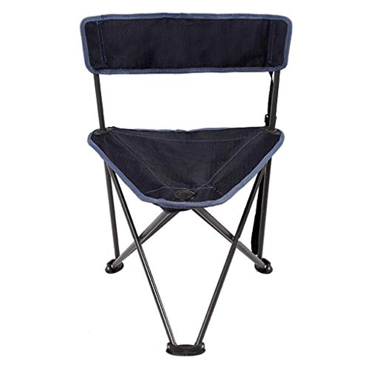 通常ほのめかすアシュリータファーマンCATRP ブランド ポータブル アウトドア 折りたたみ いす コンパクト 軽量 小さい 座席 キャンプ用 祭り 釣り 旅行する、2色 (色 : 青)