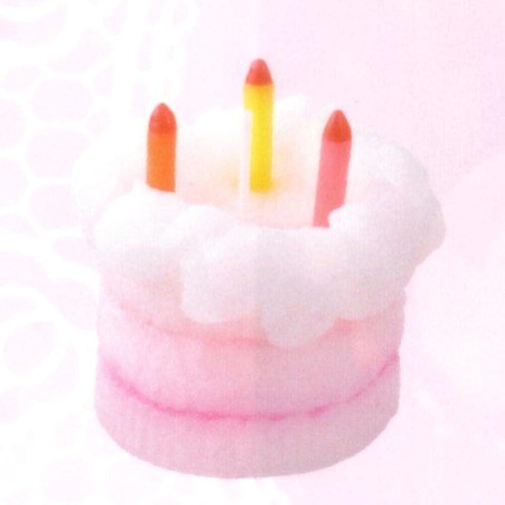 愚か二年生十ケーキキャンドル ハッピーバースデー ホワイト