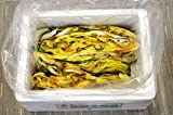 西野屋「松前白菜漬 4kg(バラ)」(4-0-24)