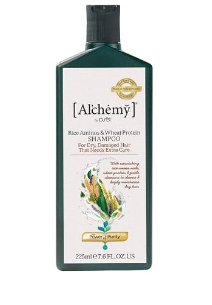 シンボルなぞらえるアラブサラボ【Al'chemy(alchemy)】アルケミー ライス アミノス モイスチャーシャンプー(Rice Aminos-Intensive Moisture Shampoo)(ドライ髪用)225ml