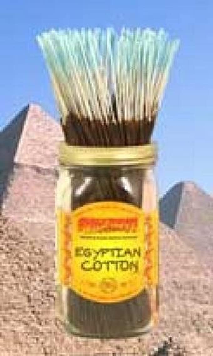 エネルギーアセンブリ海港Wildberry Incense Egyptian Cotton 100Pcs by Wild Berry