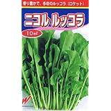 【種子】ニコル ルッコラ 10ml
