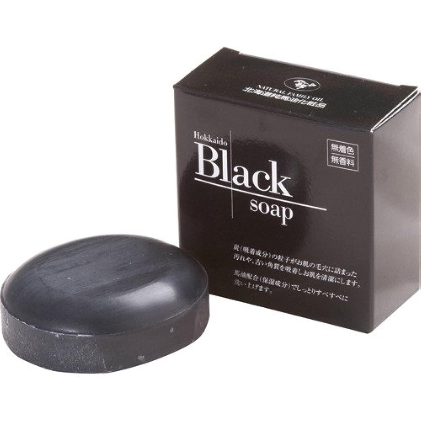 粘着性熱心な政権北海道黒石けん 100g