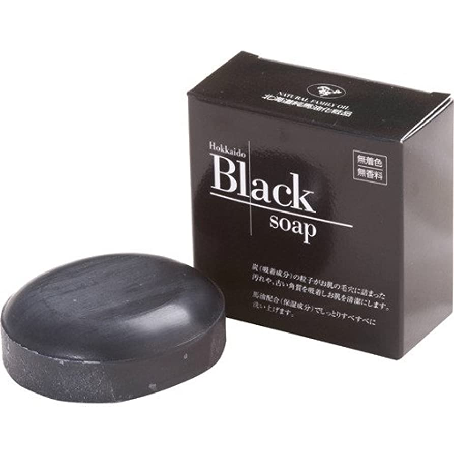 好き配置選出する北海道黒石けん 100g