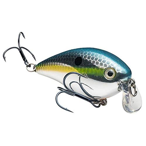 (Chrome Sexy Shad) - Strike King KVD 1.5 Shallow Square Bill Crankbait