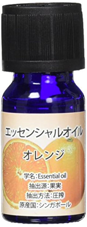 何もない制限する格差エッセンシャルオイル(天然水溶性) 2個セット オレンジ?WJ-726
