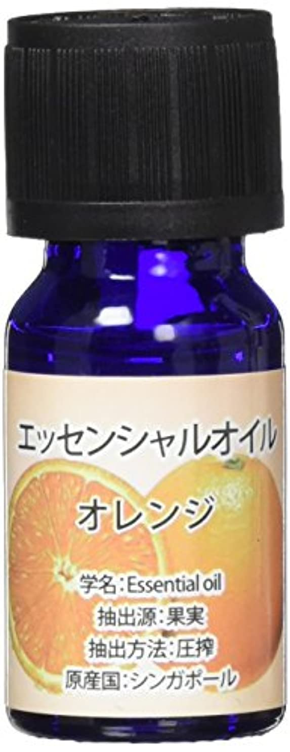 担保筋非難するエッセンシャルオイル(天然水溶性) 2個セット オレンジ?WJ-726