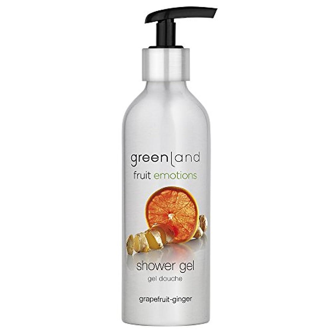 付き添い人荒涼とした味greenland [FruitEmotions] シャワージェル 200ml グレープフルーツ&ジンジャー FE0215