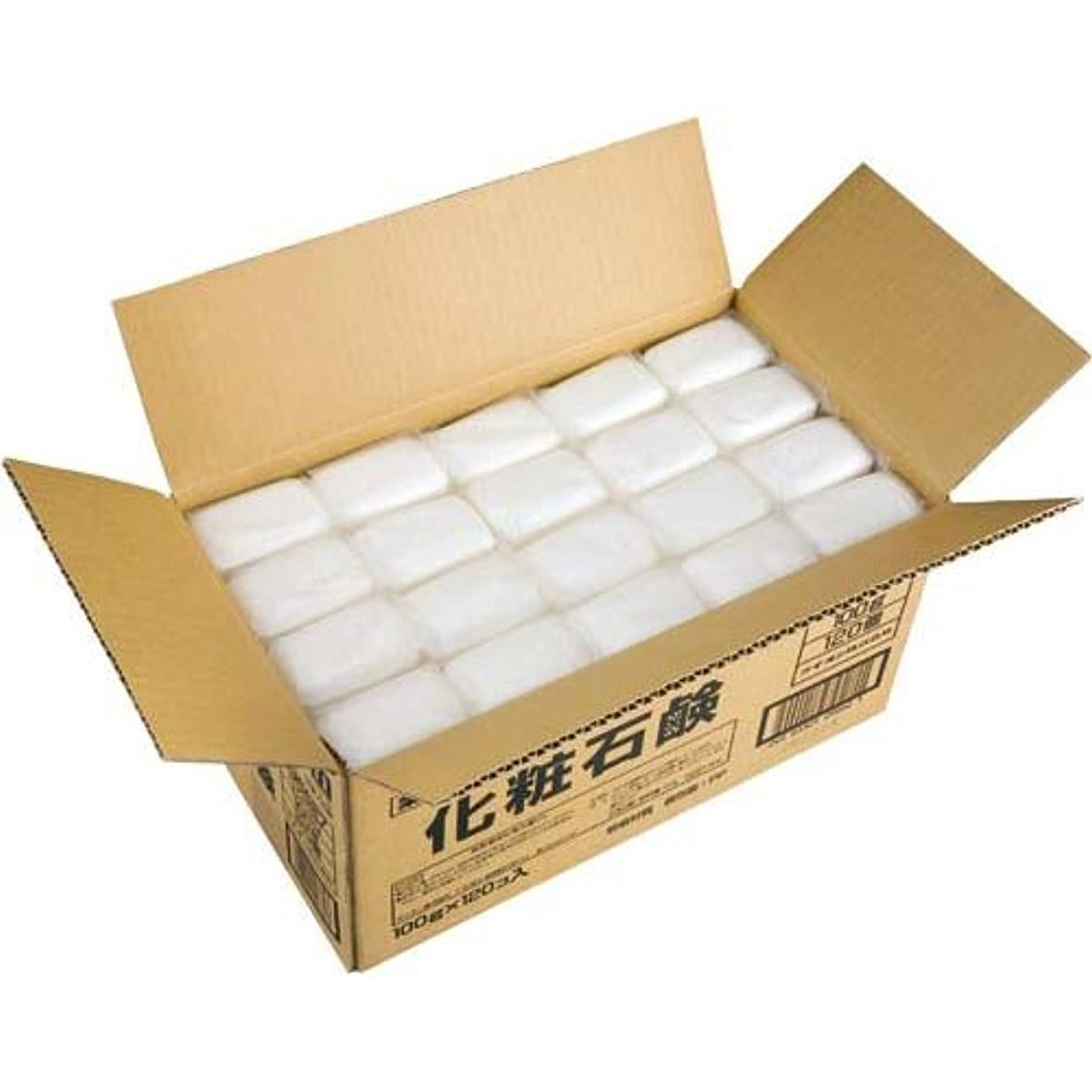 デンマーク光沢パンサーライオン 植物物語 化粧石鹸 (100g×120入)
