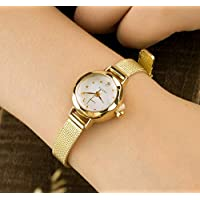 Stylish and Durable Trendy Simple Retro Quartz Watch Mesh Belt Steel Strip Watch for Ladies(Gold)