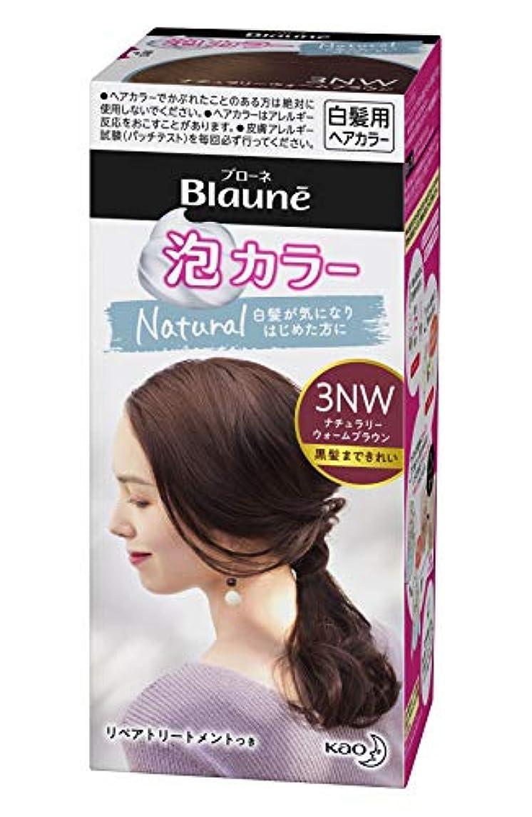 素人平らにする焼くブローネ 泡カラー 3NW ナチュラリーウォームブラウン [医薬部外品] 白髪染め 108ml