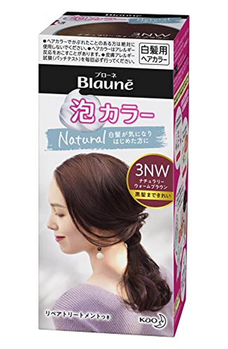 メトロポリタン栄光管理するブローネ 泡カラー 3NW ナチュラリーウォームブラウン [医薬部外品] 白髪染め 108ml