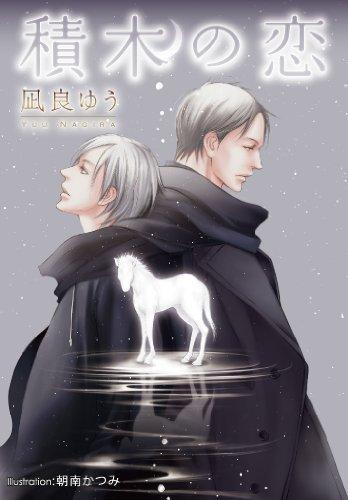 積木の恋 (プラチナ文庫)