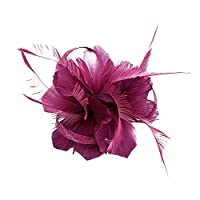 Auranso Flax Hair Clip Feather Barrette Hairpin Party Fascinator Headband Cocktail Hat for Women Girls [並行輸入品]