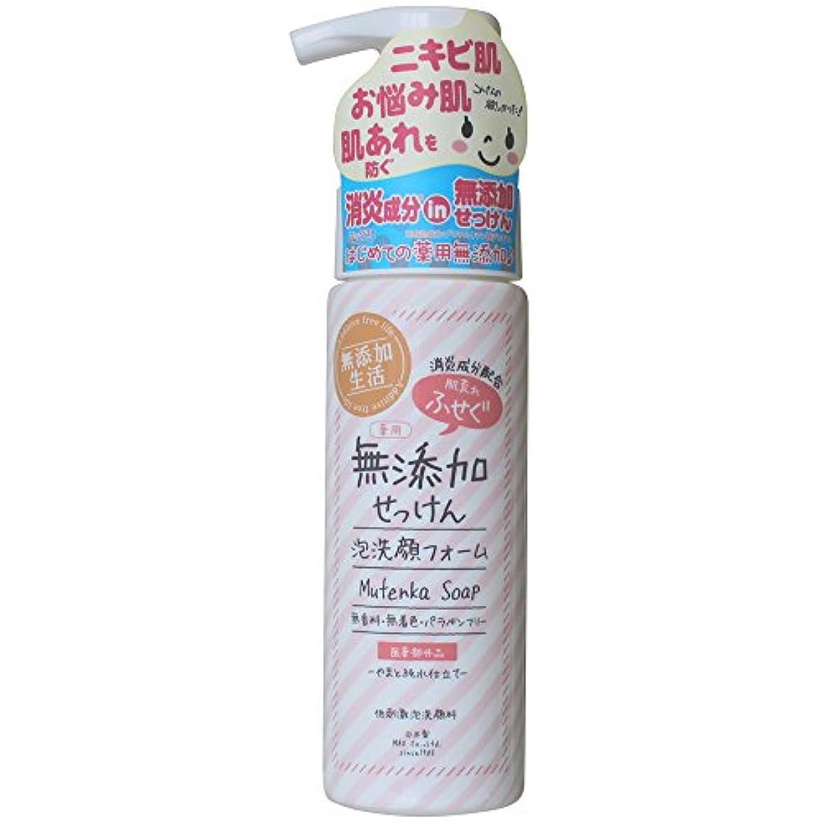 ナイロン安全なメンテナンス肌荒れ防ぐ薬用無添加 洗顔フォーム 200mL