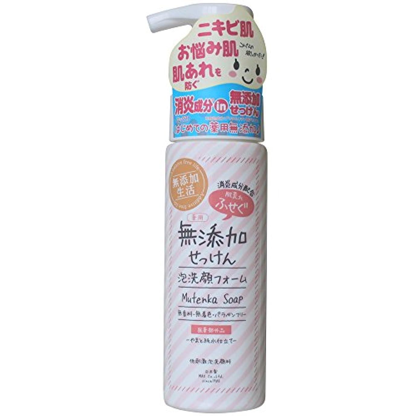 孤独な説教記念品肌荒れ防ぐ薬用無添加 洗顔フォーム 200mL