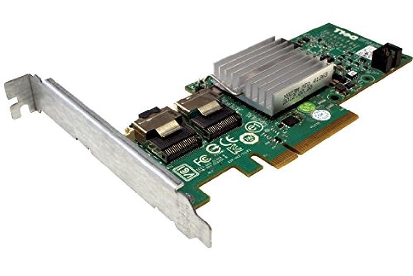 貫通するなんとなく日焼け047 MCVデル047 MCV Perc h200 SAS RAIDコントローラPCIe