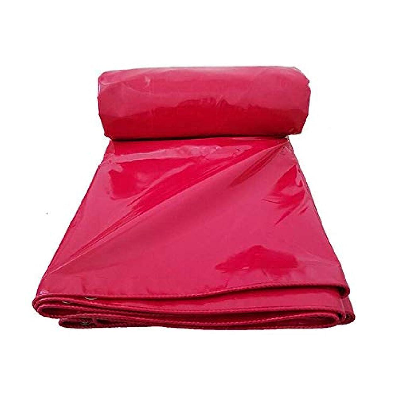 位置する広々としたボーカル19-yiruculture PVC厚手日焼け止め防雨布リノリウムキャンバス日焼け止め布ターポリントラックターポリンキャンバス (サイズ : 3m*3m)