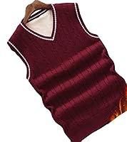 Alhyla メンズ ベスト ニット セーター メンズ おしゃれ きれいめ Vネック スタイリッシュ 秋 春 無地 メンズ ニット スリム カジュアル セーター ベストレッド厚手bs5