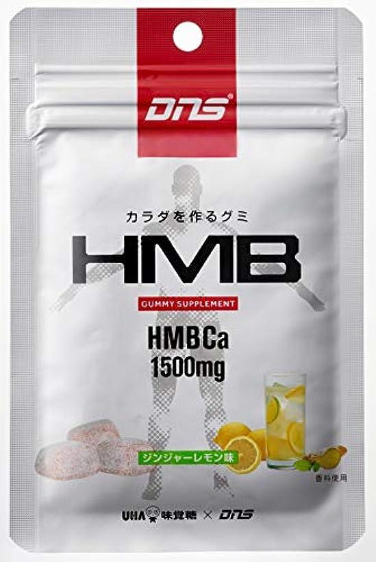 安心させるハグ遠いUHA味覚糖 DNS カラダを作るグミ HMB パウチタイプ ジンジャーレモン味 7粒(29g)×10個 10日分
