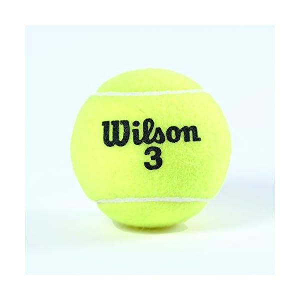 【Amazon限定モデル】Wilson(ウイ...の紹介画像13