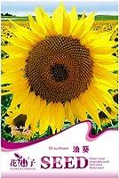 1元のパック15の種/パックオイルのヒマワリの種、あらゆる種類の土の花の種に植えます