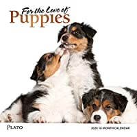 For the Love of Puppies 2020 Calendar: Foil Stamped Cover