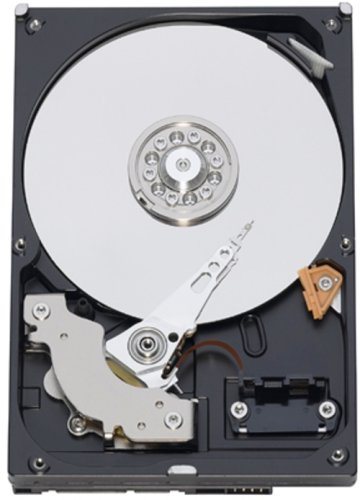 WESTERN DIGITAL 3.5インチ内蔵HDD 1TB IntelliSeek 32MB SATA 3.5inch(GP333) WD10EADS