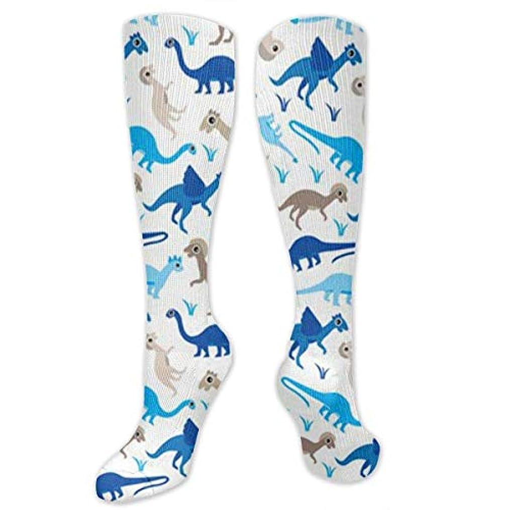 始まりワーカー良心的靴下,ストッキング,野生のジョーカー,実際,秋の本質,冬必須,サマーウェア&RBXAA Baby Blue Dinosaur Socks Women's Winter Cotton Long Tube Socks Cotton...
