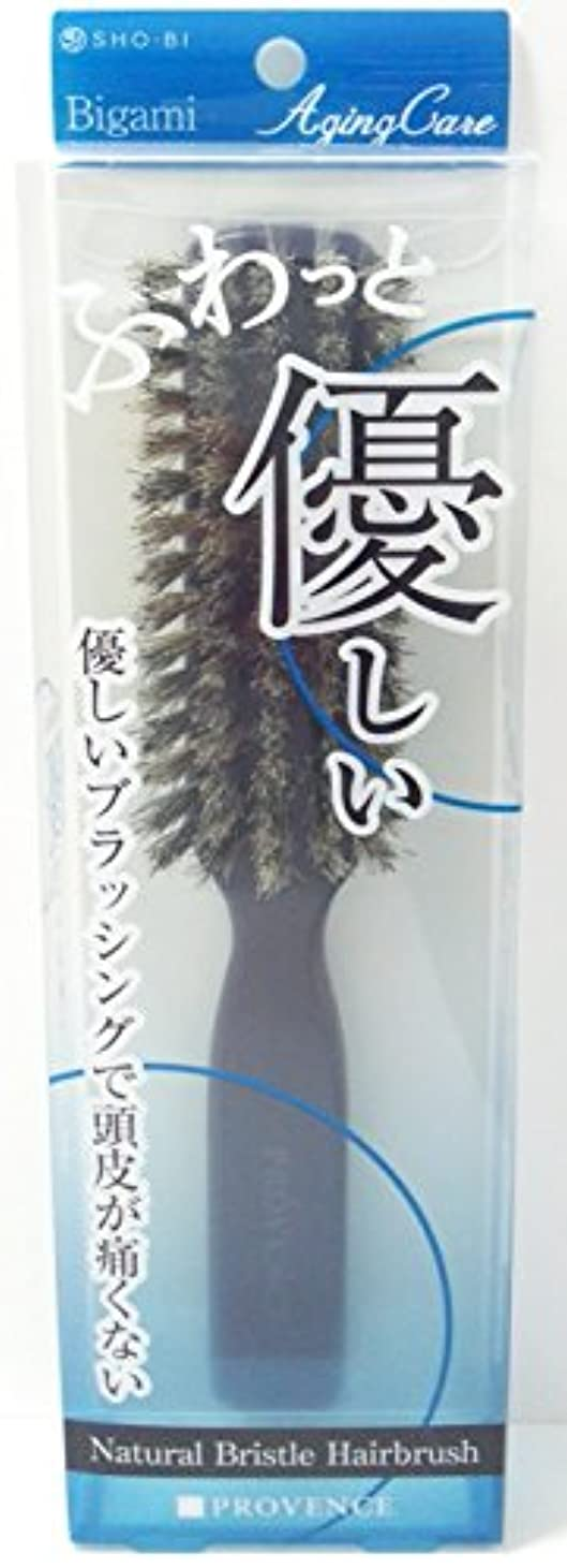 入場強制的うれしいPROVENCE エイジングケア やわらかヘアケア天然毛ブラシ SPV71097