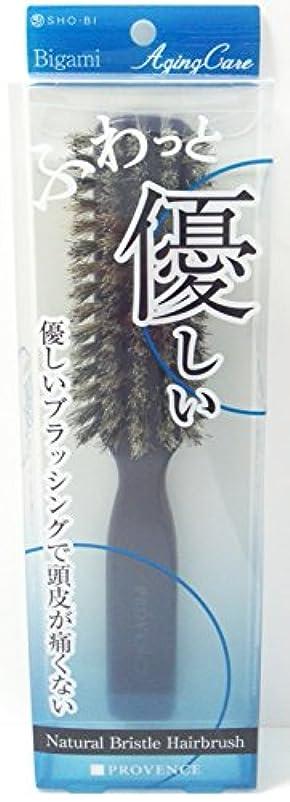 テンション汚染する応用PROVENCE エイジングケア やわらかヘアケア天然毛ブラシ SPV71097