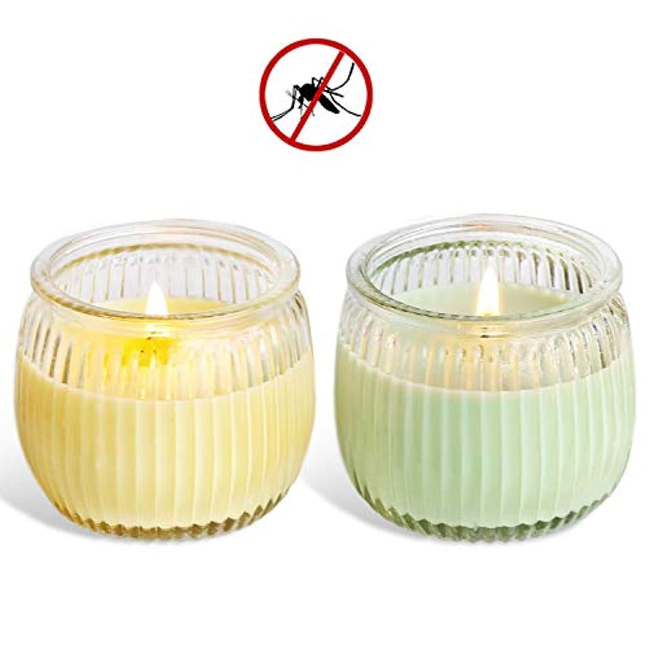 下る環境に優しい原告処置 スイカガラスカップの野菜大豆ワックスアロマキャンドルグリーンキャンドル