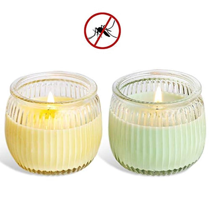 正当化する前進体現する処置 スイカガラスカップの野菜大豆ワックスアロマキャンドルグリーンキャンドル