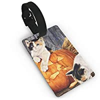 猫 かぼちゃ 油絵 ネームタグ スーツケース 紛失防止 おしゃれ 出張タグ 旅行小物 かわいい荷物 装飾タグ 旅行用品 IDカード ネームカード付き