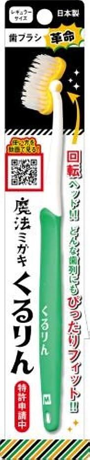 宿るその後留め金歯ブラシ革命 「魔法ミガキくるりん」 グリーン × 3個セット