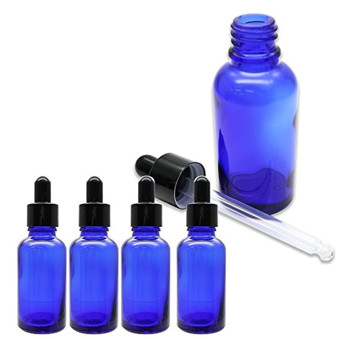 コンサート古代私たちSagittaire スポイト式 遮光瓶 ガラス製 30ml 5本セット 化粧水 香水 保存 旅行 詰め替え (ブルー)