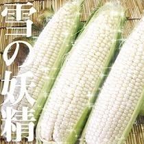 [予約販売 8月20日~9月中旬までに順次発送】 雪の妖精 L、2L混10本