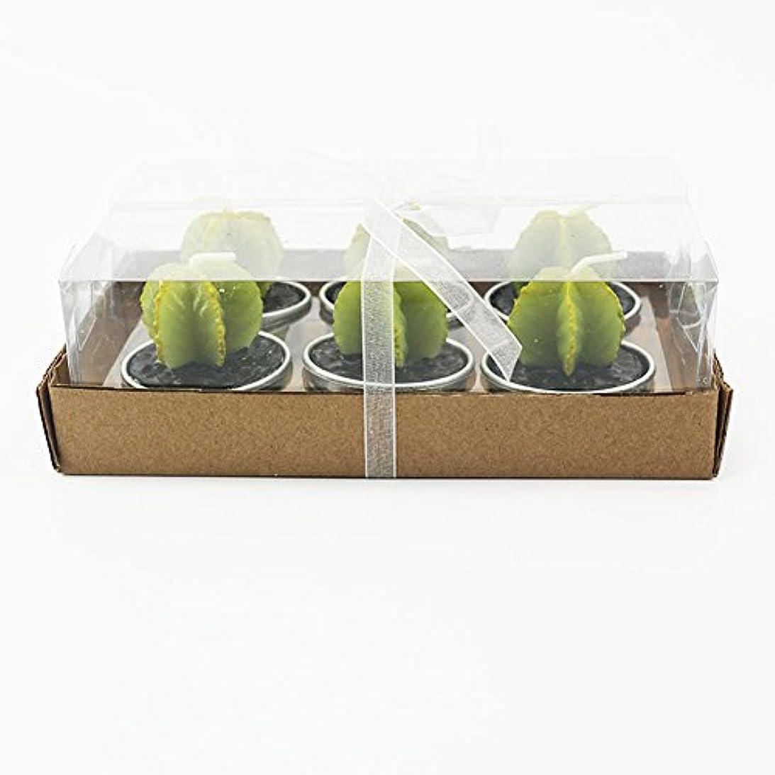 非行講義二年生Liebeye キャンドル 多肉植物スモークフリーのクリエイティブなキャンドル100%自然のワックスかわいい模造植物フルーツの形状低温キャンドル 6個/箱 ゴレンシボックス