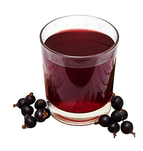 イヌリン + 乳酸菌 + 腸のデトックス - 30 days body detox & colon cleansing diet - CRITCH DETOX (forrest berry) contains 40 mineral drinks and 90 capsules to purify colon and liver with lactobacillus, psyllium, inulin and psyllium husks - probiotic + weight loss + detox - 100% vegan, gluten-, lactose- and sugarfree - コロンデトックスクレンズは、30日間の種子を逃げました [ドイツからプロバイオティクス]