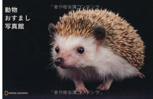 ナショジオ ワンダーフォトブック 動物おすまし写真館 (ナショジオワンダーフォトブック)の詳細を見る