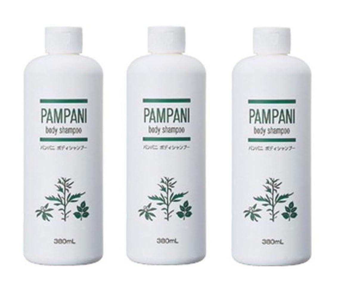大陸広告主セールスマンパンパニ(PAMPANI) ボディシャンプー 380ml×3本組
